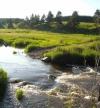 Куда впадает река турья в краснотурьинске